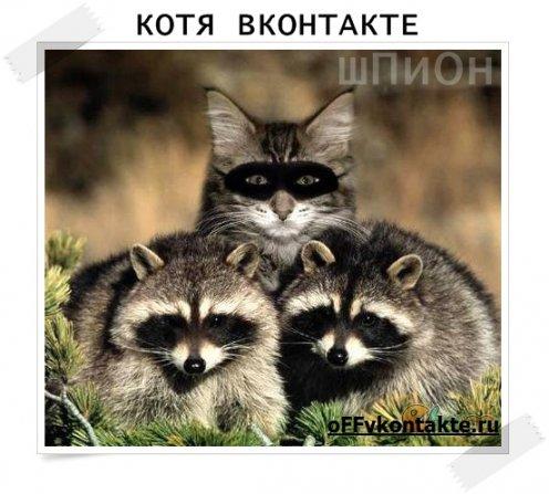 OFFline Вконтакте, или как